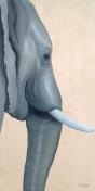 L'éléphant d'Asie (15 x 30″)