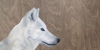 Le loup à l'écoute (30″ x 15″)