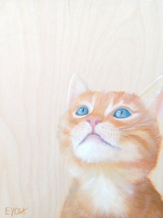Les visions du chat (12 x 16″) 144$ + tx